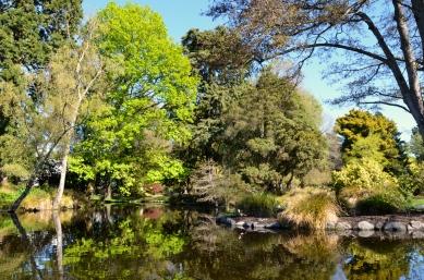 Lone Duck Lake