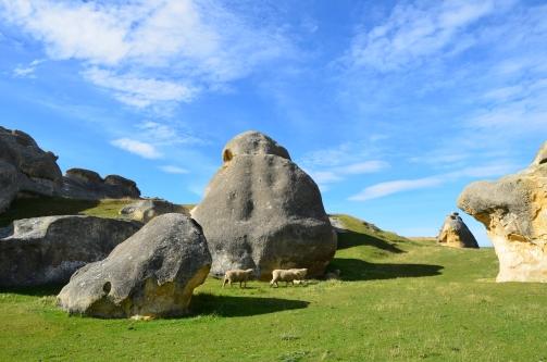 Sheep Among Giants