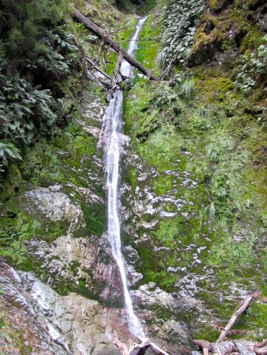 Trickling Falls