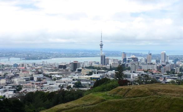 Mount Eden View
