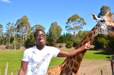 Tickle Me Giraffe